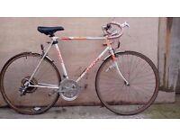 Challange Racer Bike Needs Work..Ideal Singlespeed Conversion