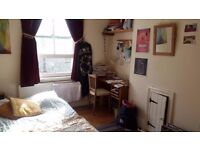 Lovely double room in central Brighton - available mid October