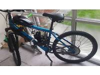 80cc peddle bike