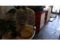 Lovely looking Large Gold bird cage in Good Condition