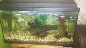 Bargain fish tank for sale