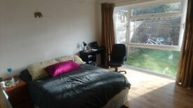 Double Room to Rent - Short Term