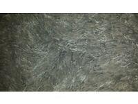 Gorgeous grey rug