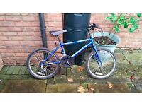 Boys Blue 10 gear bike 20 inch wheels