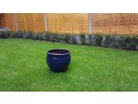 2 x Blue Garden Pot (Size 350mm)