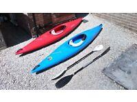 2x Perception Kayaks For Sale