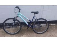 woman's mountain bike