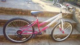 Gilrs mountain bike