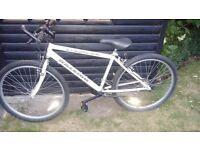 Raleigh Max Mountain Bike - 22 inch wheels - good condition - £40