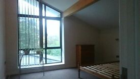large double room, lounge, kitchen and bathroom