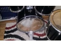 Pearl Export Series Drum Shells