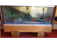 Large Fish Tank & Wooden Base/stand