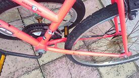 Apollo Corona bike for sale
