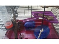 Large hamster cage with all necessary accessories
