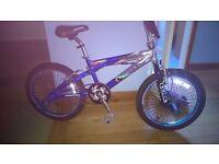 "KOBE Screamer Aluminium Frame BMX Bike - 11"" Frame and 20"" wheels; Good condition with stunt pegs"
