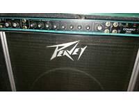 Peavey combo 300 bass amp