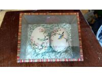 Hand painted birds eggs in glass presentation box