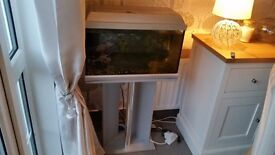 Fish Tank with new pump and fish tank items.