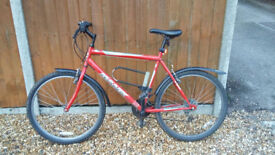 Mountain bike cheap in good working condition.