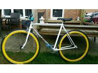 Vintage Raleigh Fixie. Heavily Modified