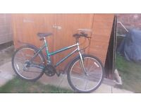 Ladies Professional Cycle with mudguards