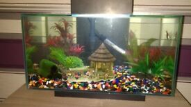 fish tank in good condition
