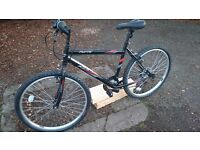 Activ Flyte Mountain Bike