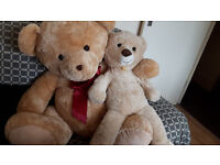 2 Teddy`s for sale