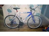 Barracuda men's vantos road bike