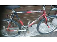 RALEIGH MUSTANG MENS MOUNTAIN BIKE, 21 INCH FRAME, 26 INCH WHEEL'S, 18 GEARS, GOOD CONDITION..