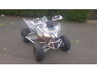 yamaha raptor 250 2009 year for sale