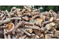 Fire wood available free to collector or can deliver if very local