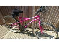 Teenagers to small adult mountain bike good working order