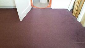 purple bedroom carpet