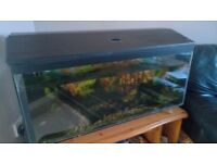 big fish tank 90 litters with equipment