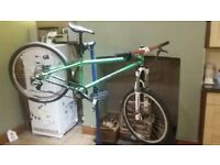Dialled Holeshot 4X/DJ bike