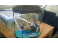small fish tank ....................................................................................