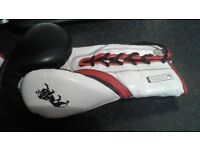 Lonsdale LCORE leather lace up boxing gloves