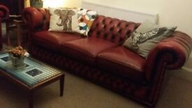 Vintage Ox-blood Chesterfield sofa, Tub chair and Wingback chair.