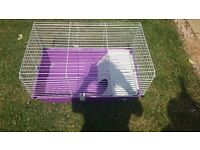 Lovely guinea pig hutch for indoors, suitable for 2 guinea pigs