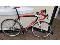 Willier Triestina Carbon Fibre Road Bike