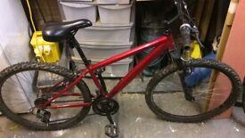 Boys Apollo Mountain bikes
