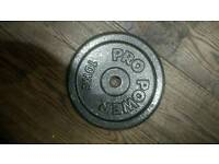 2x 10kg weight plates