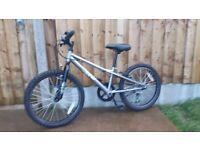 Apollo spektor mountain bike