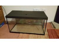 A good condition 54 liters fish tank for sale