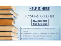 Transfer test/ KS3/GCSE Tutoring available. See picture below for details. Price is negotiable.
