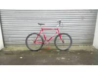 Bocini single speed bike.