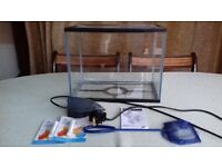 Cold Water Fish Tank And Filter