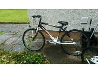4 bikes for sale