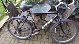 British Eagle Boss Mountain Bike